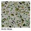 Arctic-Mose in Atlanta Georgia