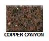 Copper-Canyon in Atlanta Georgia