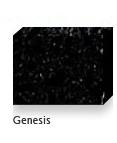 Genesis in Atlanta Georgia