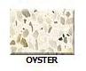 Oyster in Atlanta Georgia