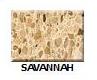 Savannah in Atlanta Georgia